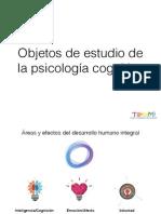 objetos de estudio de la psicología cognitiva
