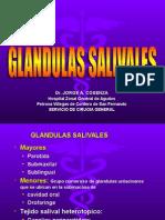 GL Salivales