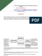 03 Organizador Gráfico.docx Milla