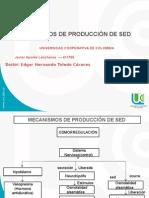 Mecanismo de Produccion de La Sed.