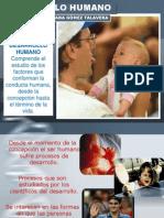 1. 2015 Desarrollo Humano Aula Virtual