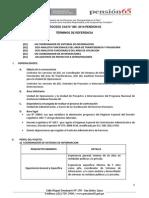 Convocatoria Cas 085 2014 Pension 65