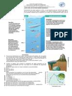 ecoststema acuatico #2