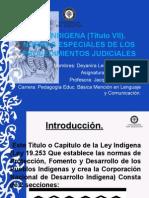 Normas Especiales de Los Procedimientos Judiciales