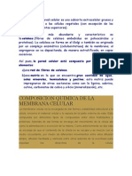 Composición.docx