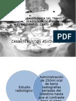 Anatomia Radiologica Del Transito Intestinal