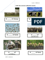 Worksheets Collective Nouns