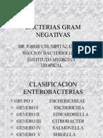 Bacilos Gram Negativos