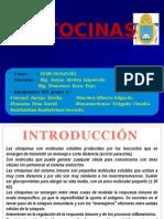 Citocinas