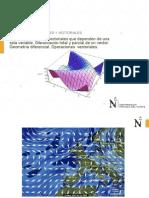 campos vectoriales y escalares