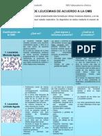 Clasificacion Tipo de Leucemias