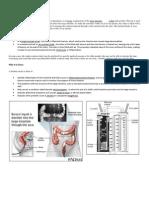 Enema pdf