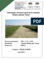 proiect tehnic drumuri