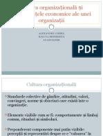 249676990 Cultura Organizațională Și Perfomanțele Economice Ale Unei Organizații