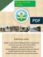 Materi Kab Blitar Sehat 17 Juni 2014.ppt