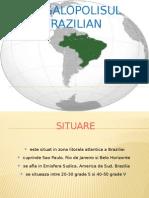 Megalopolisul Brazilian.pptx