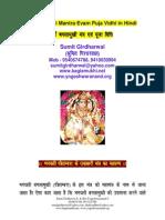 Maa Baglamukhi Mantra in Hindi