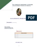 Formular.managementul Proiectelor MTC