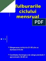 Tulburarile Ciclului Menstrual