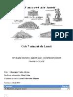 Documentatie.docx