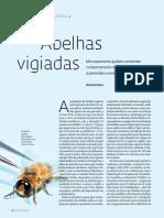 Abelhas Vigiadas_FAPESP 2014