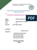 Trabajo de Sistema Nacional de IP