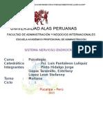 el sistema endocrino uap.docx