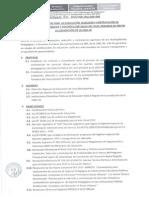 directiva-ugel06-021-2015.pdf
