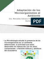 Adaptación de los Microorganismos al Ambiente