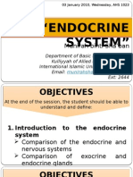 8. Anatomy 11 - Endocrine