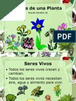 Partes de Una Planta 2B