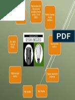 Presentaciónwendy2