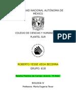 Galápagos 3 d