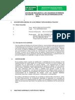 Informe_de_Encuesta_de_Usuario_Externo_MORONA.doc