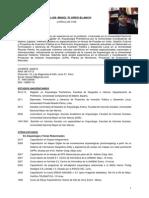 CV Luis Flores 2015b