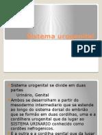 Sistema Urogenital Esborço