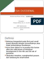 Css Atresia Duodenal - Mizan