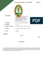 Normas Del Control Interno en El Sector Publico Grupo 3