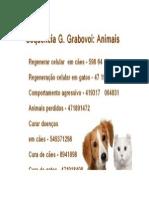 Sequencia - Animais