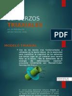 ESFUERZOS  TRIAXIALES