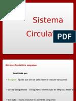 Anatomia e Fisiologia Do Sistema Circulatório