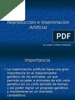 Inseminacion Artificial ZGral.ppt