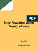 I Celi-Manejo del Semen congelado de carneros.pdf