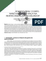 Etnografias Do Brau-libre