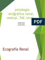Semiologia Ecografia Renal, Vesical, Tac Renal