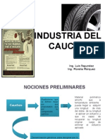 Presentacion Del Caucho