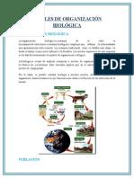 Organizacion Biologica