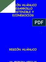 region  huanuco