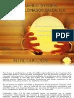 Cuadro de Mando Integral (Calcinados Calca, c.a.)