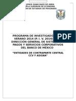 Ensayo PIV ContraParte Central.docx